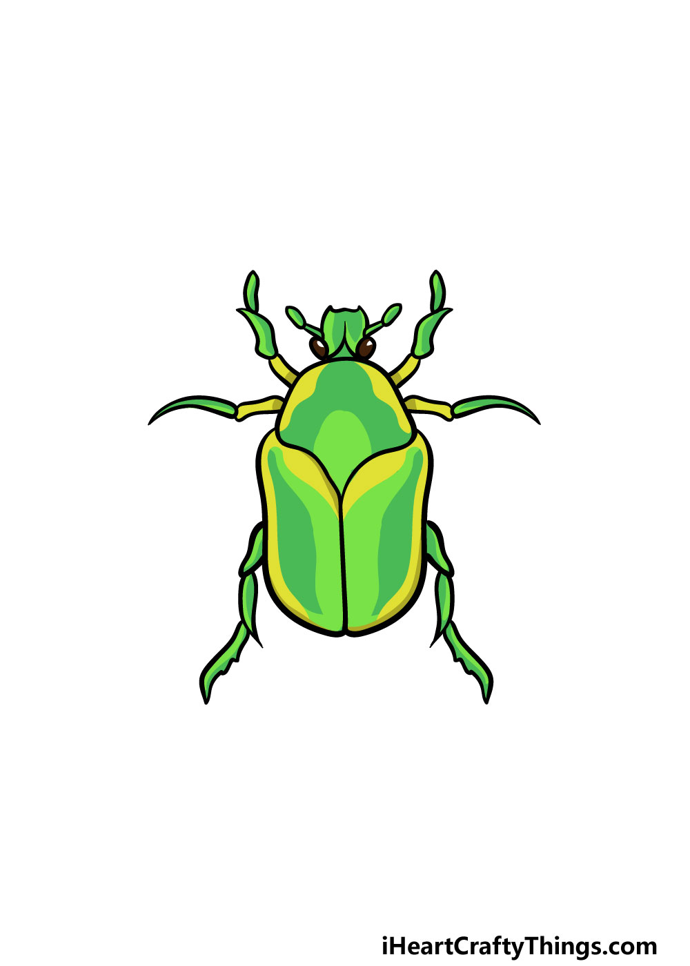 drawing a bug step 6