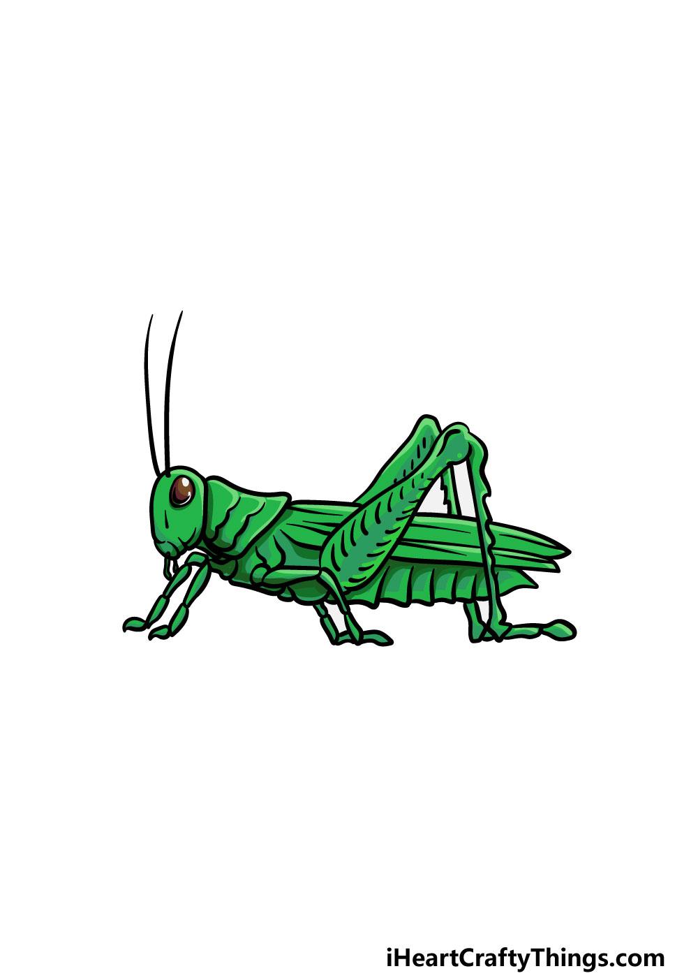 drawing a grasshopper step 6