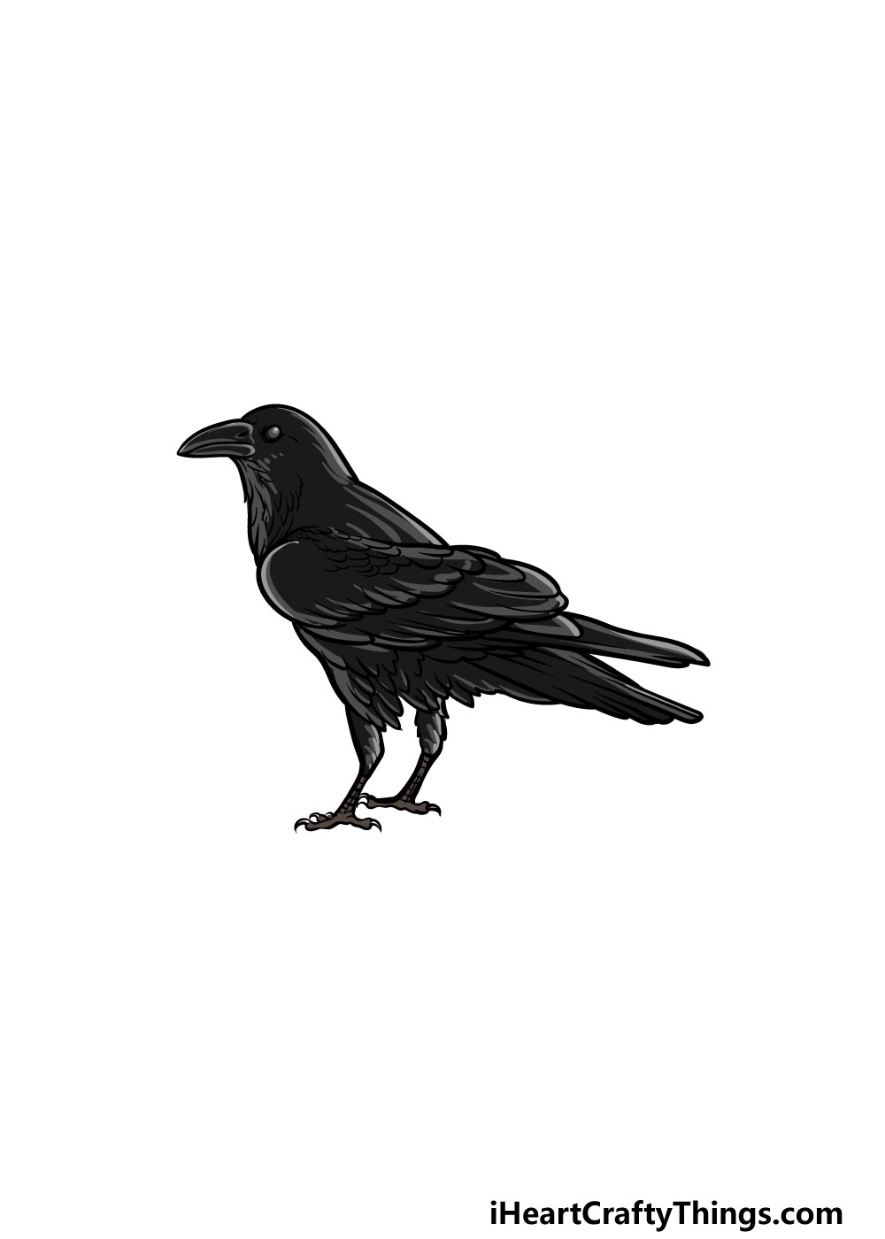 drawing a crow step 6