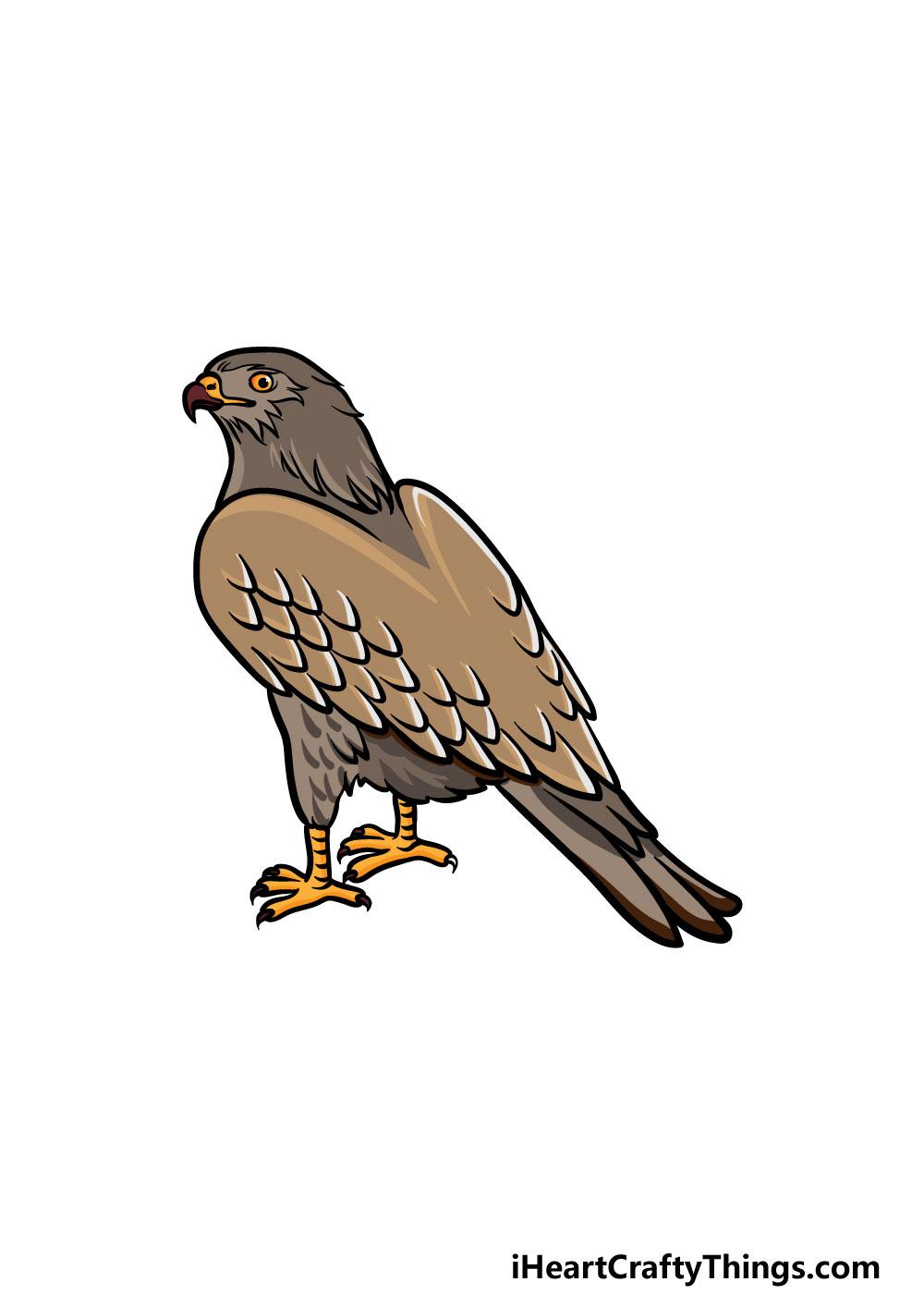 dibujando un halcón paso 6