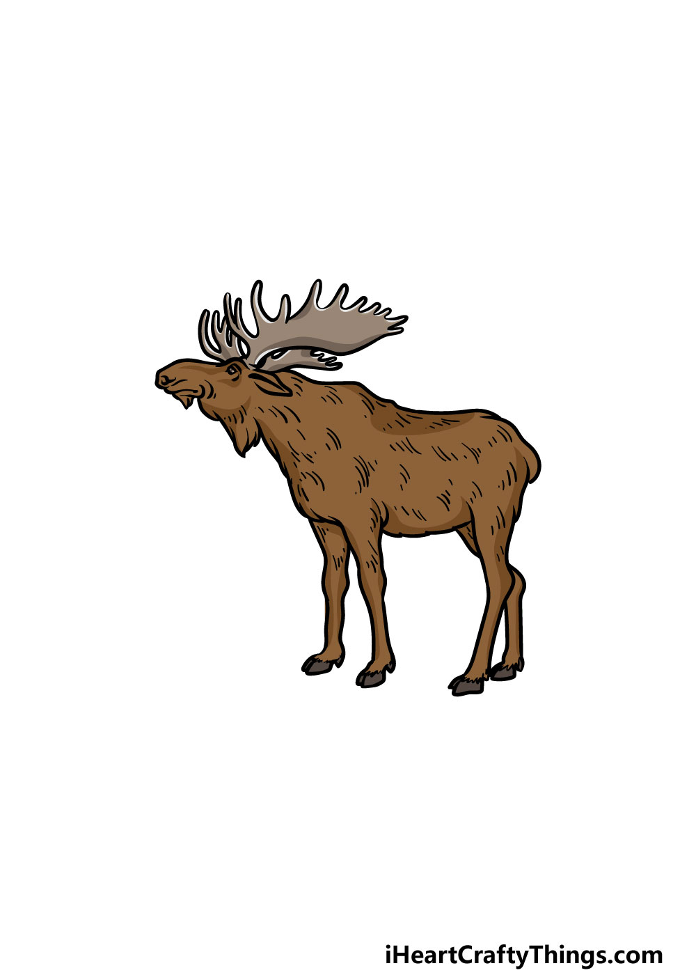 drawing a moose step 6
