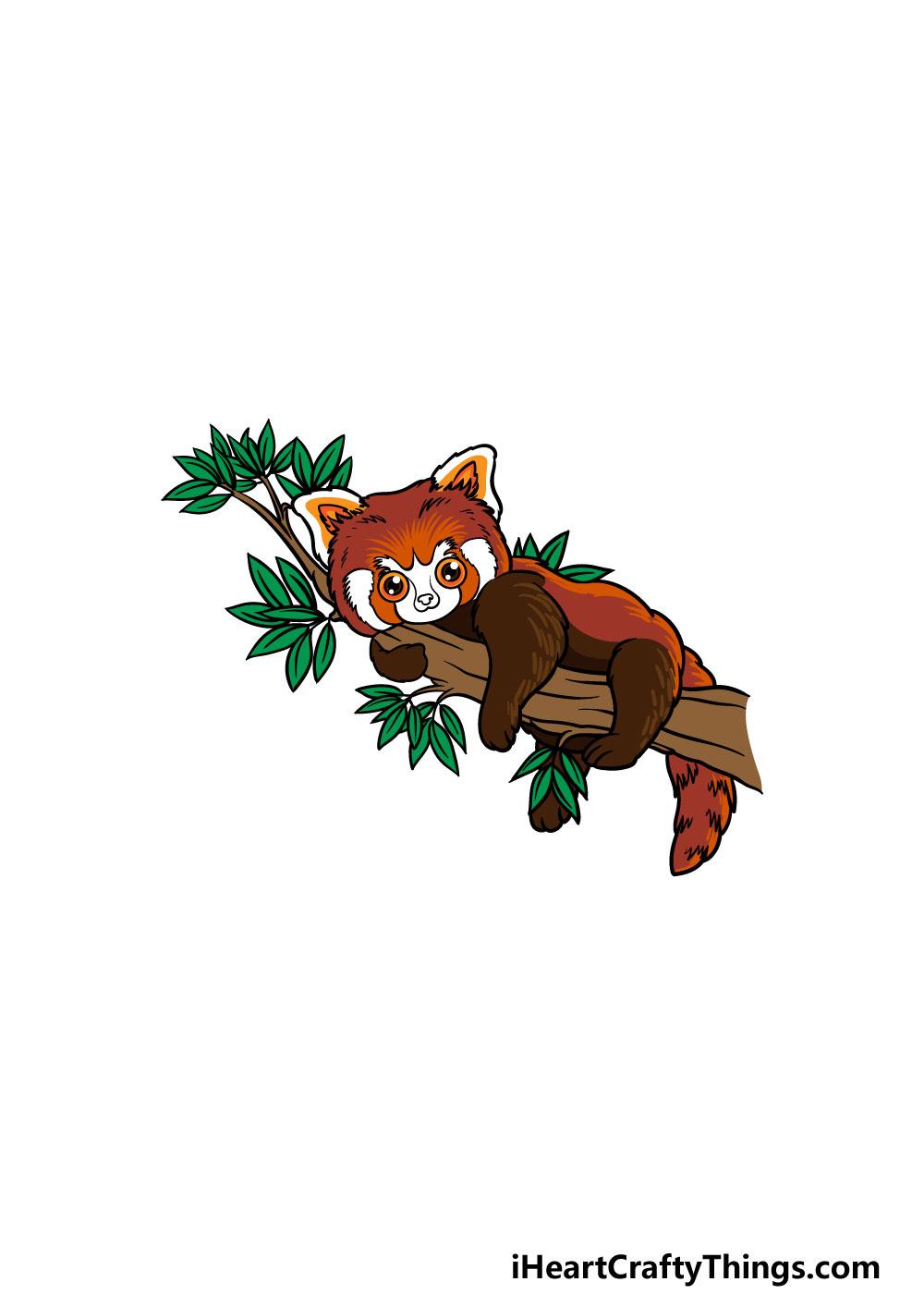 drawing a Red Panda step 6