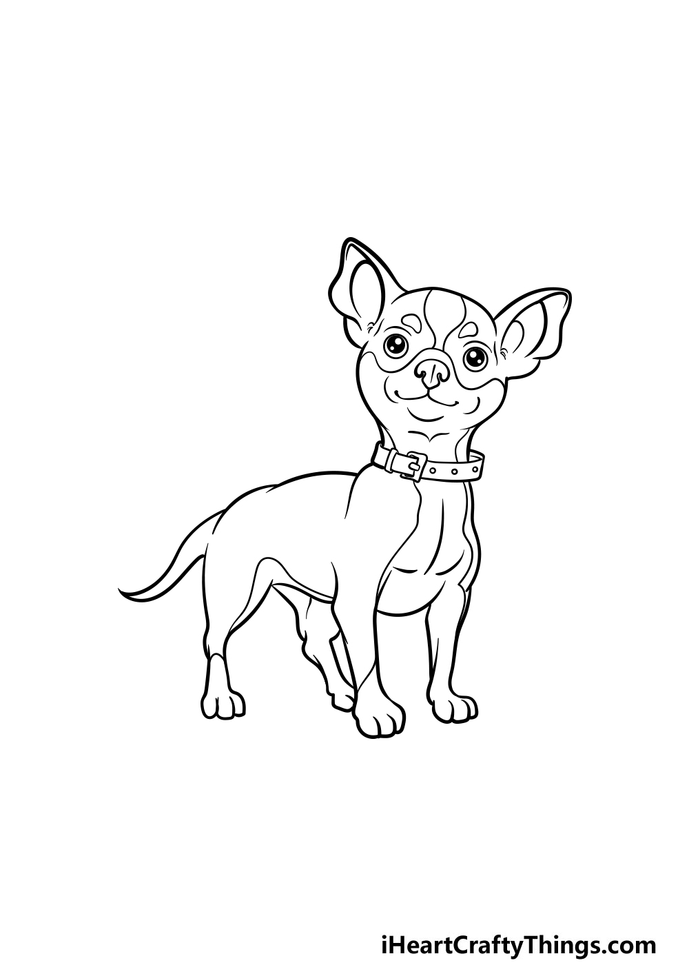 drawing a chihuahua step 7