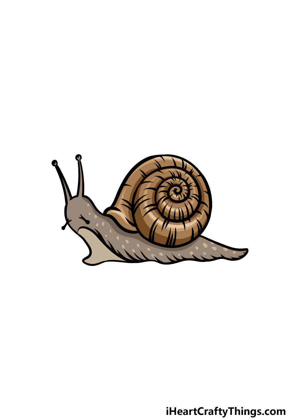 drawing a snail step 8