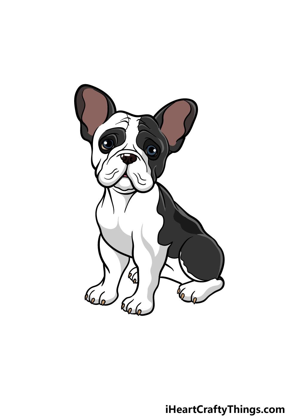 drawing a french bulldog step 8