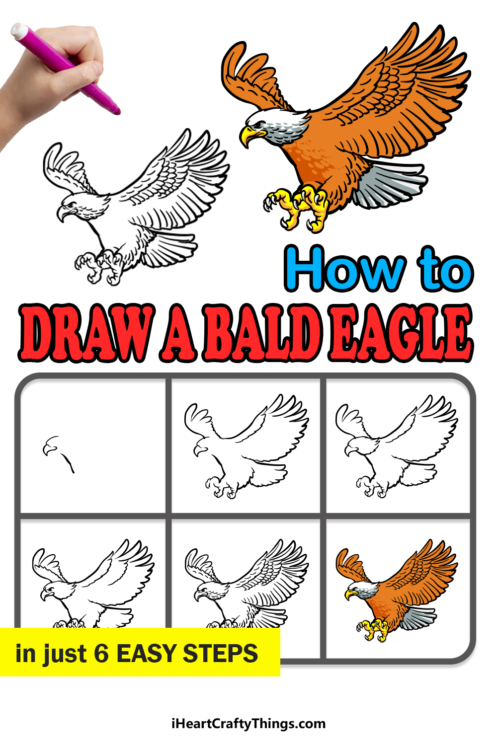 how to draw a bald eagle in 6 easy steps