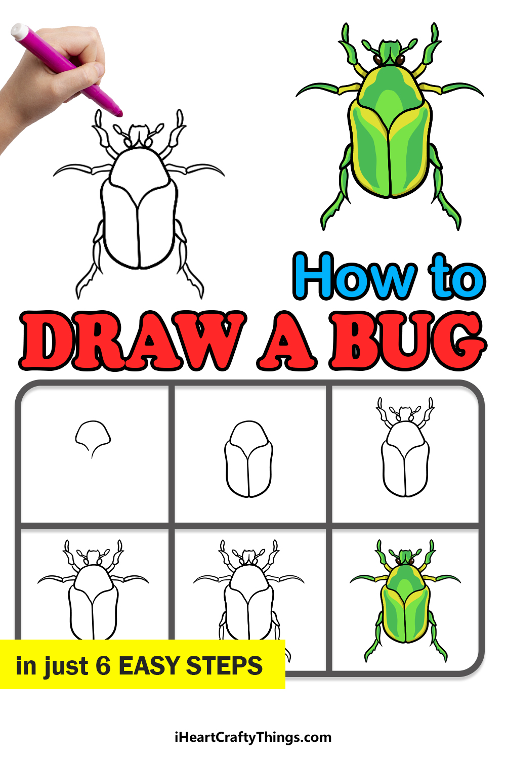how to draw a bug in 6 easy steps