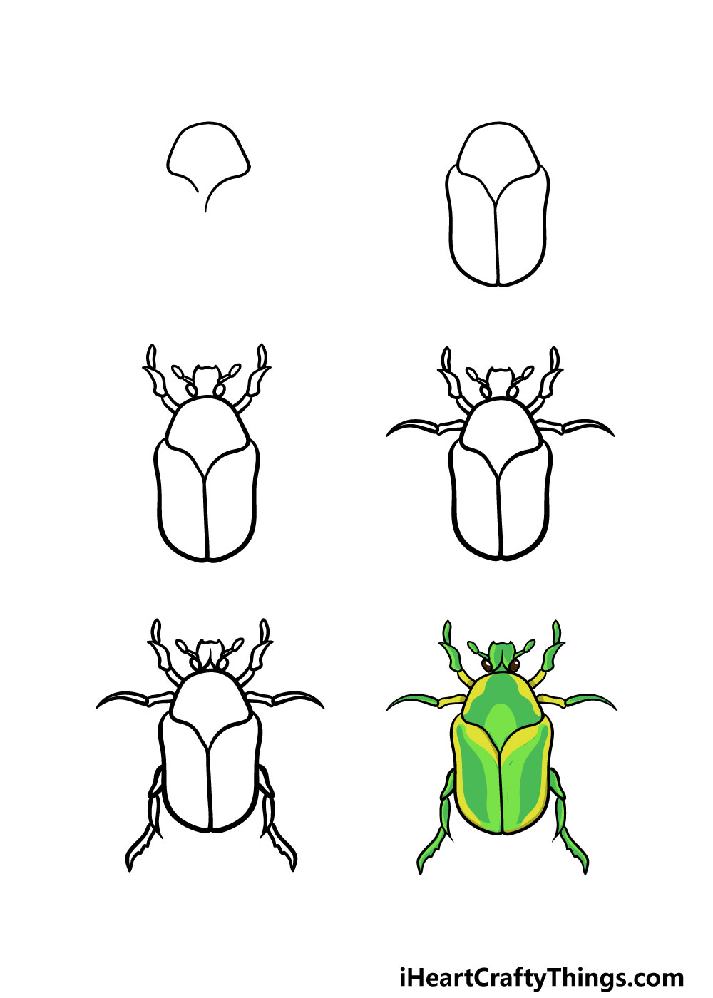 how to draw a bug in 6 steps