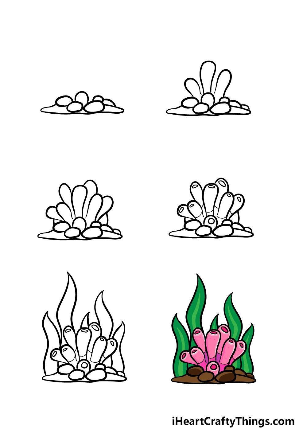 cómo dibujar un coral en 6 pasos