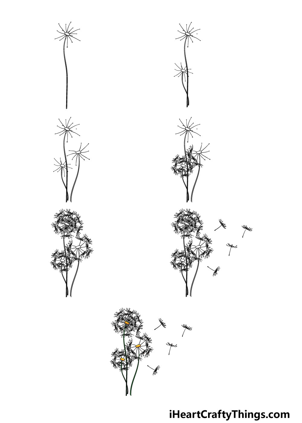 how to draw a dandelion in 7 steps