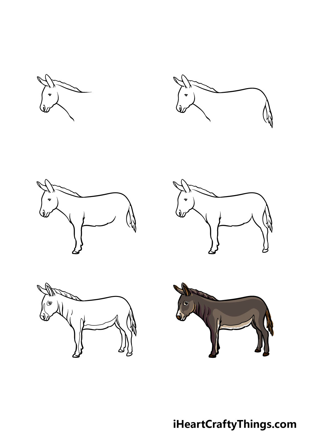 how to draw a donkey in 6 steps