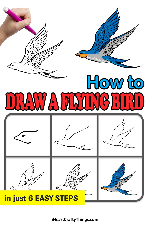 cómo dibujar un pájaro volador en 6 sencillos pasos