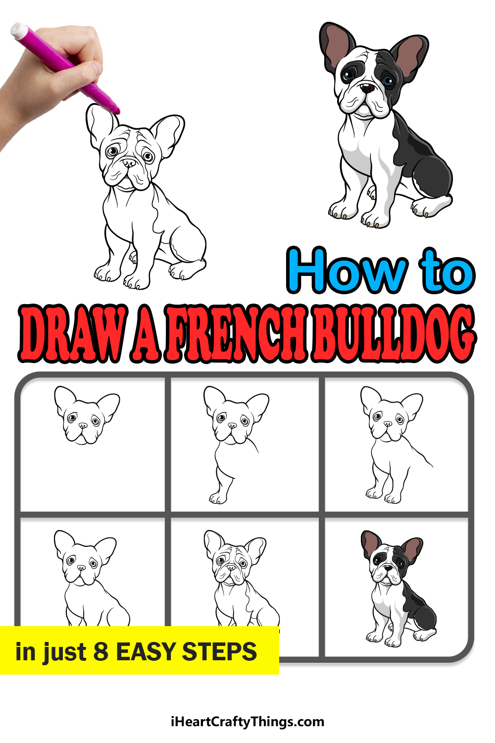 how to draw a french bulldog in 8 easy steps