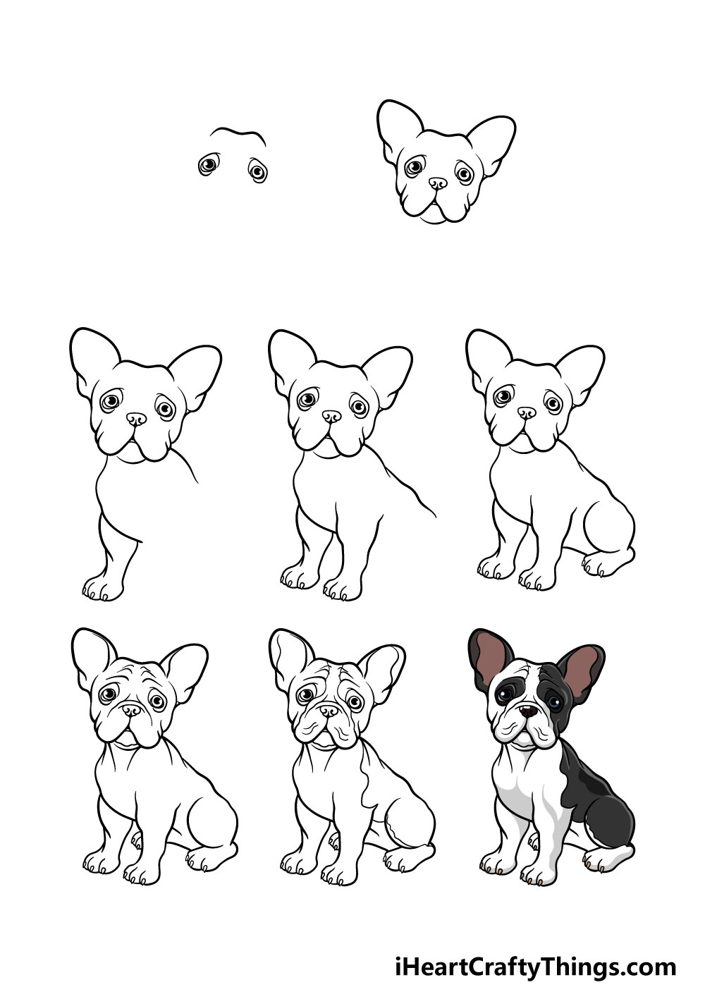 how to draw a french bulldog in 8 steps