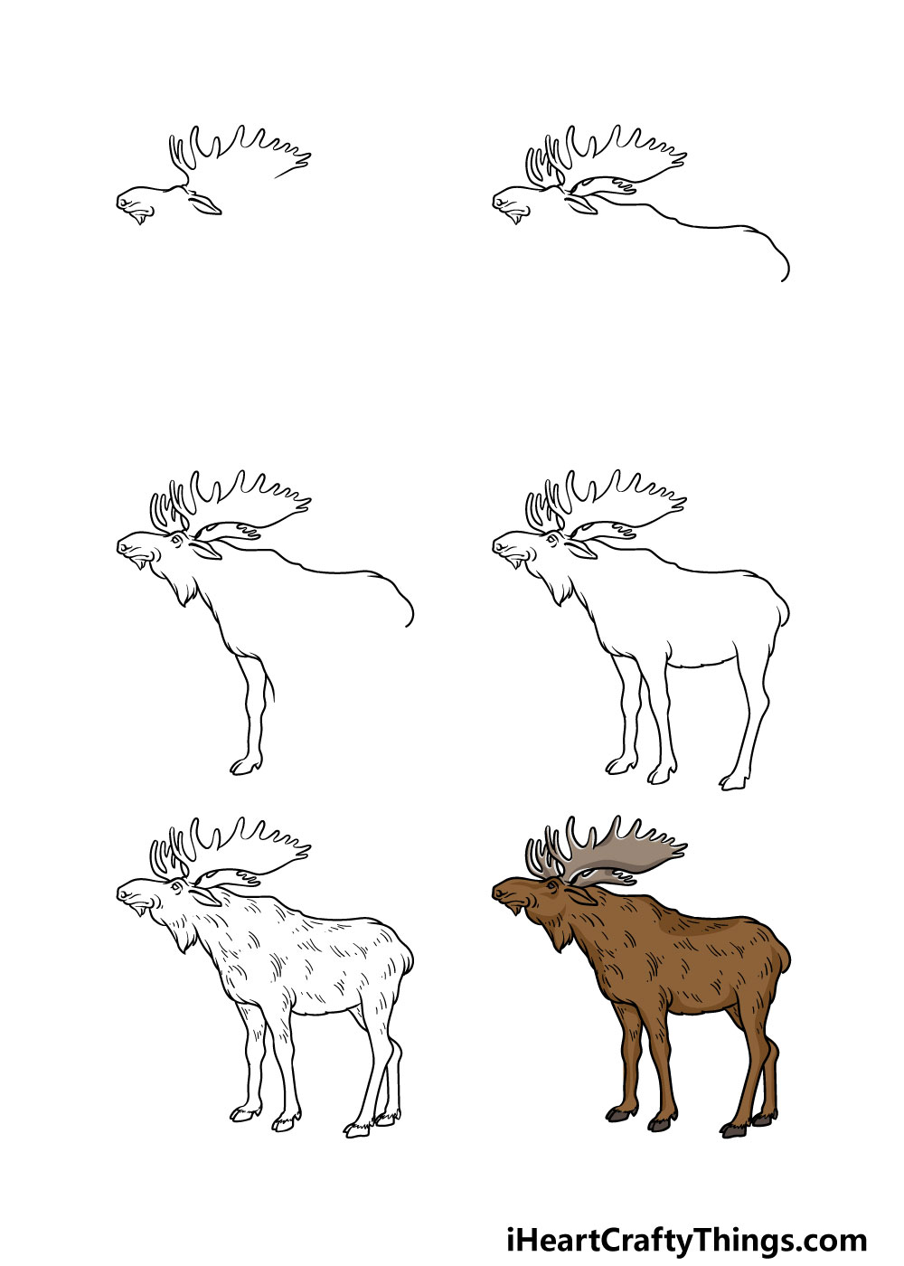 how to draw a moose in 6 steps