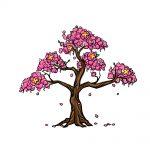 how to draw a cherry blossom image