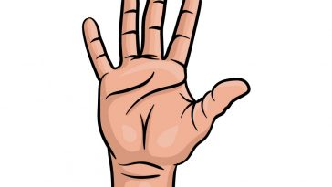 how to draw fingers image