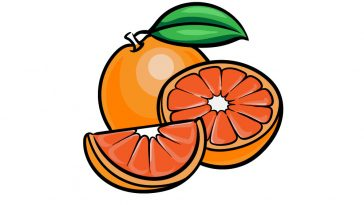 how to draw an orange image