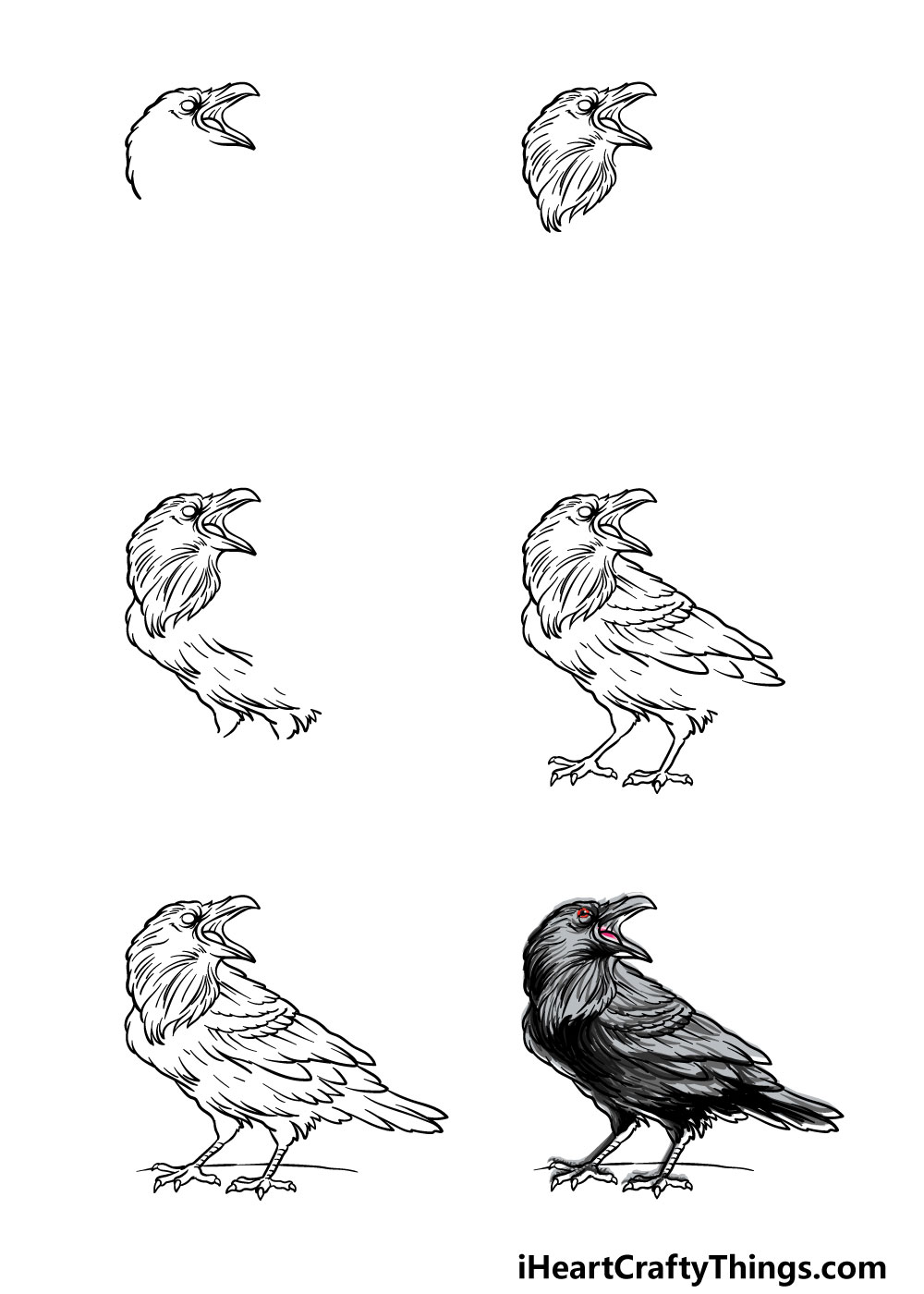 how to draw a raven in 6 steps