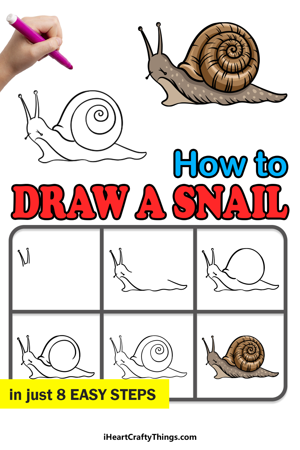 how to draw a snail in 8 easy steps