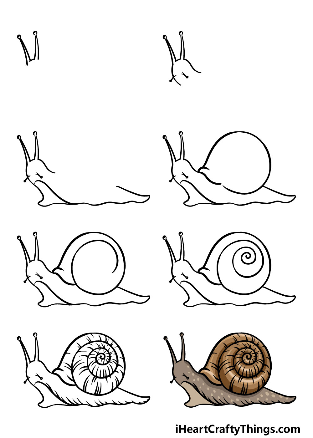 how to draw a snail in 8 steps