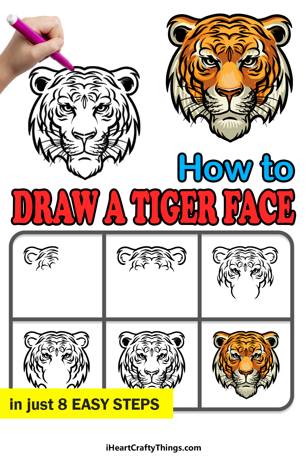 how to draw a tiger face in 8 easy steps