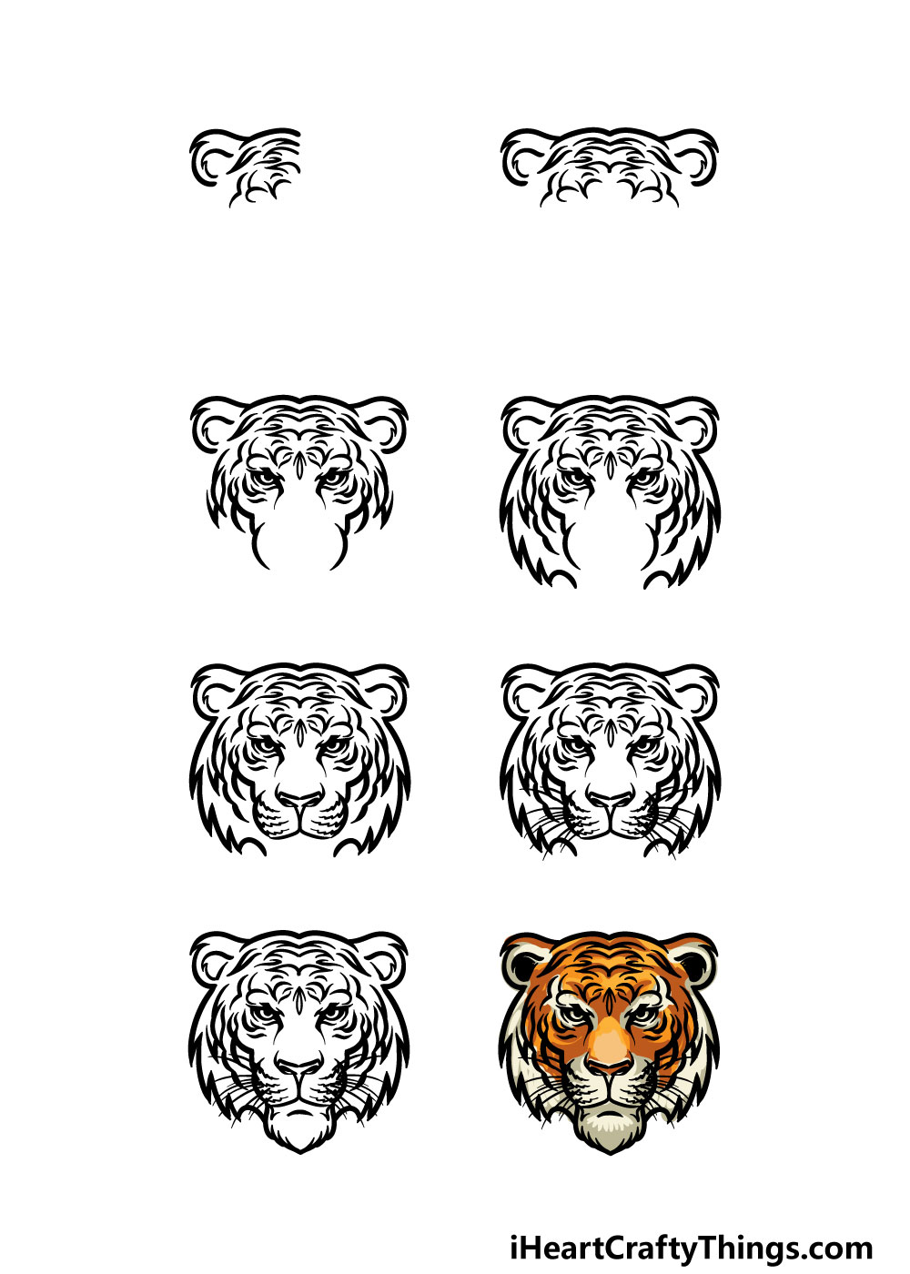 how to draw tiger face in 8 steps