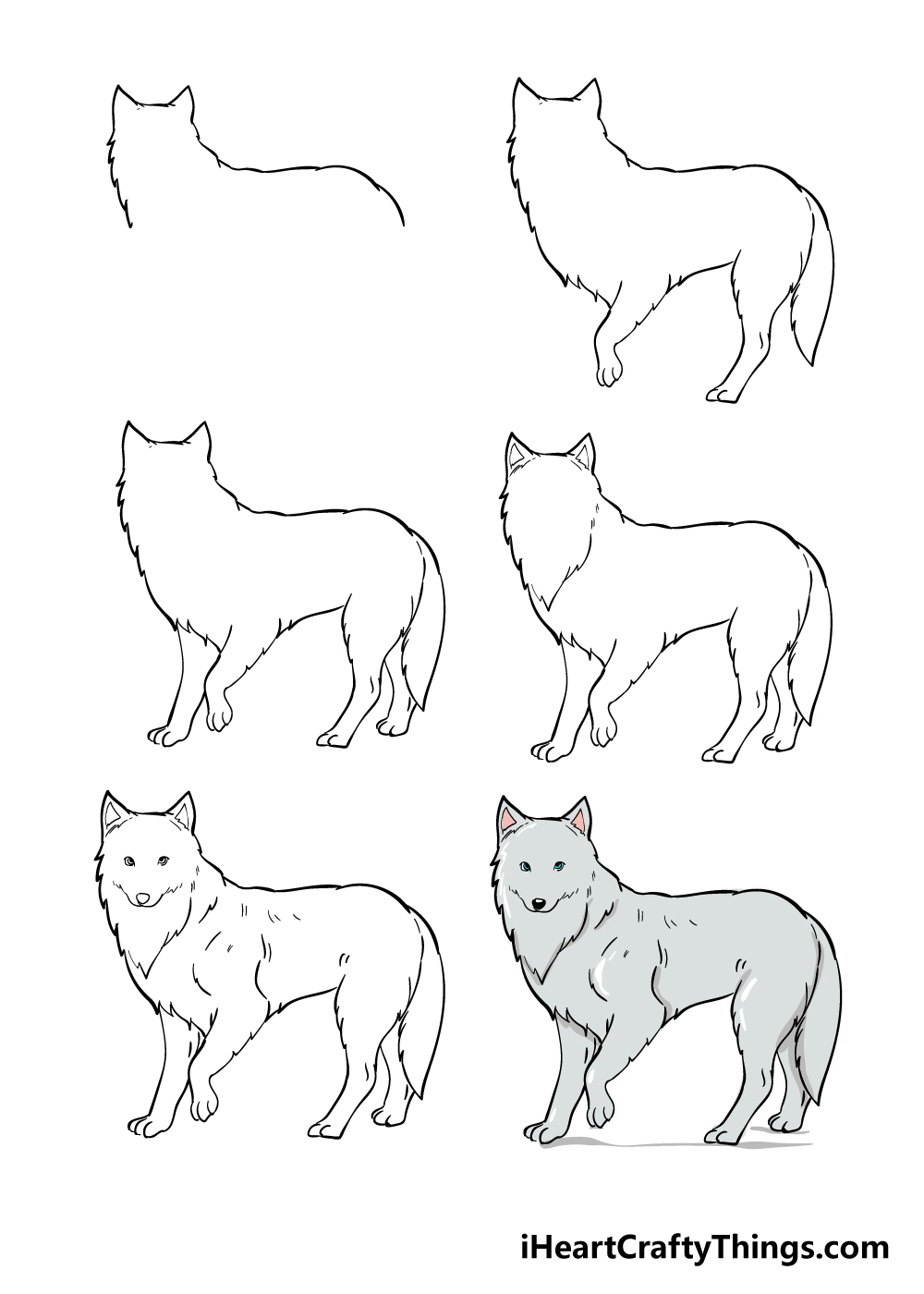 how to draw arctic fox in 6 steps