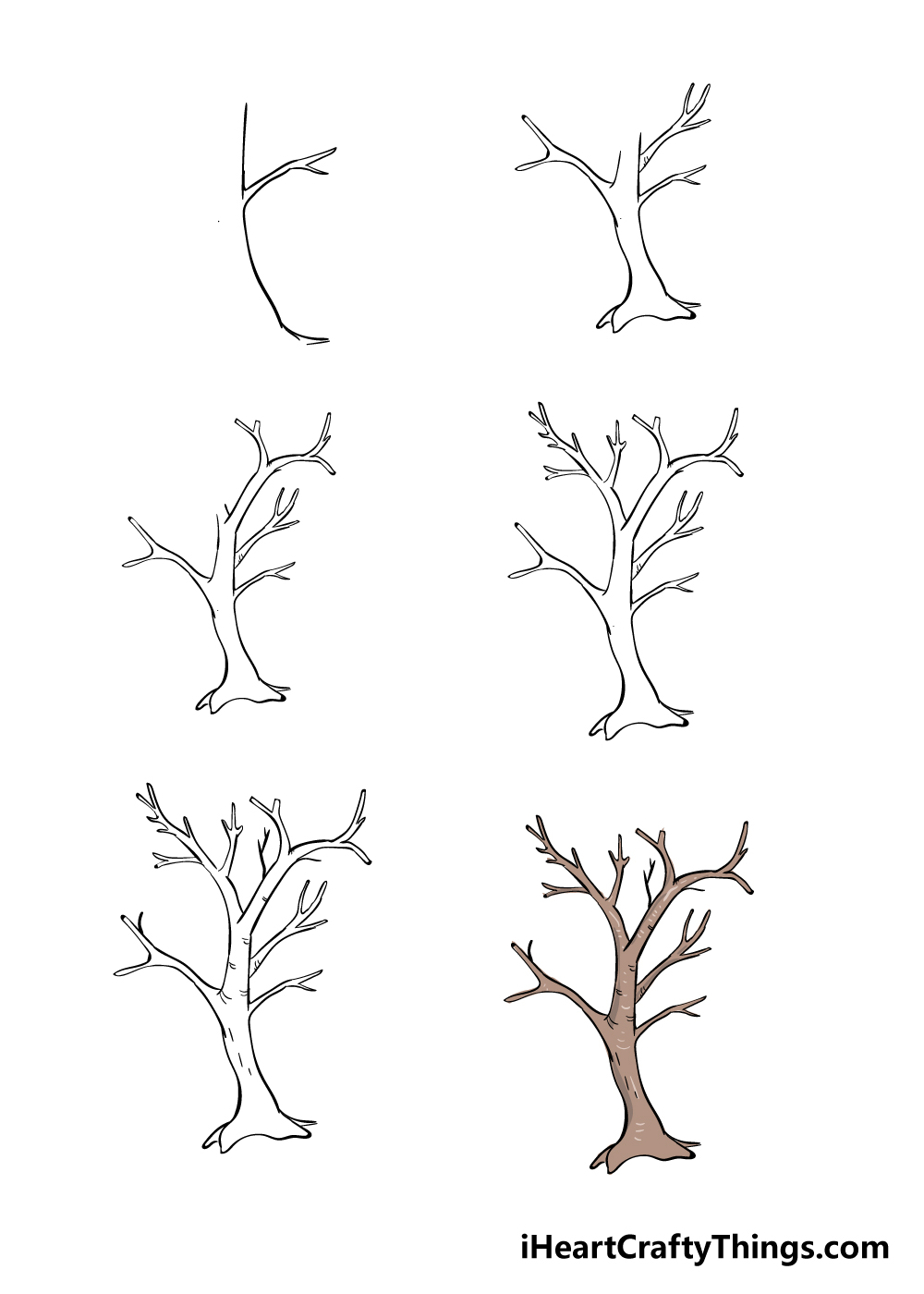 How to Draw Branches in 6 steps