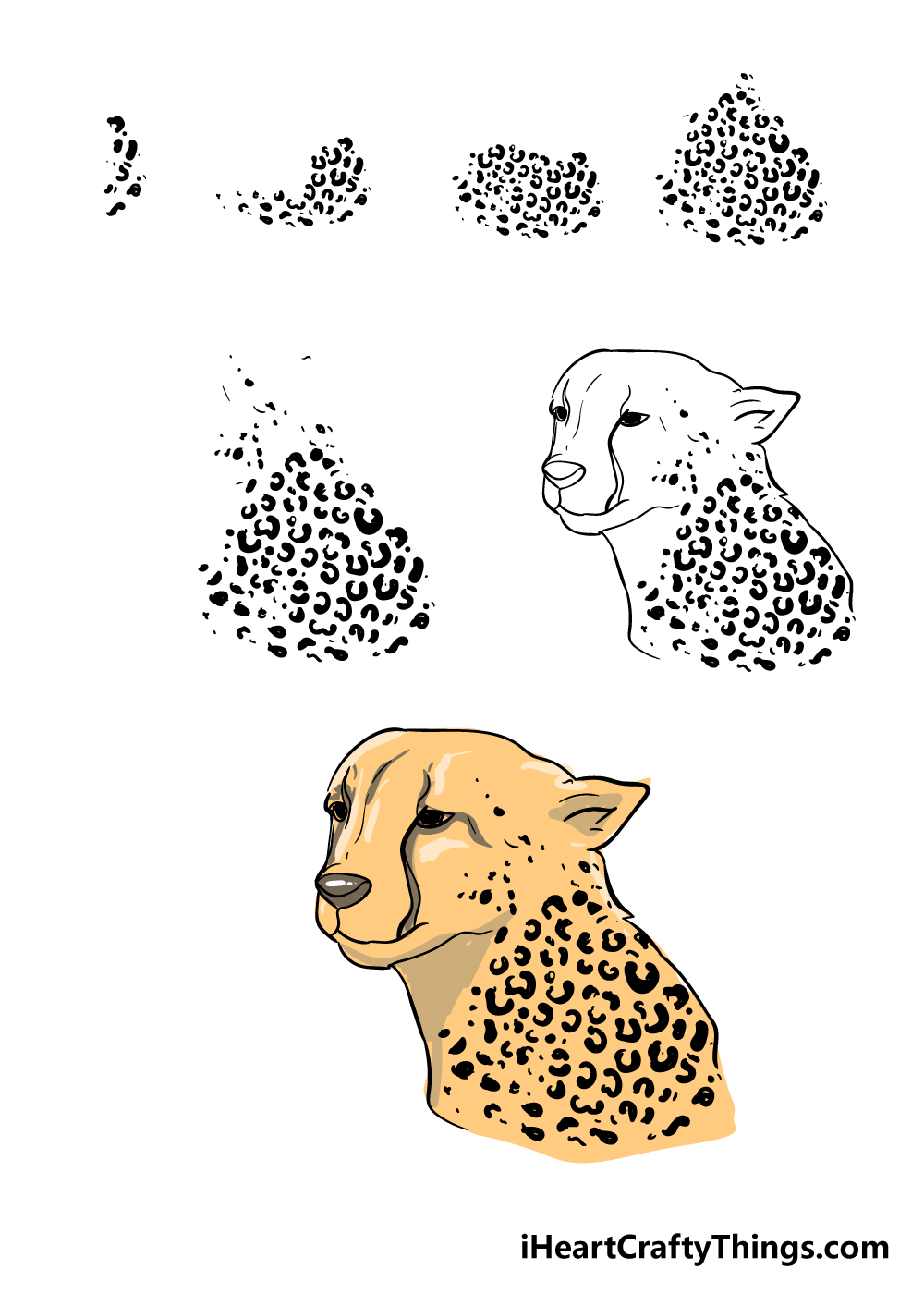 how to draw cheetah print in 7 steps