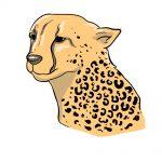 how to draw cheetah print image