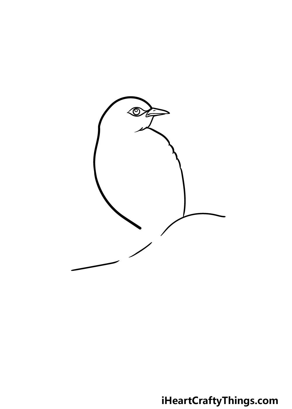 drawing a robin step 1