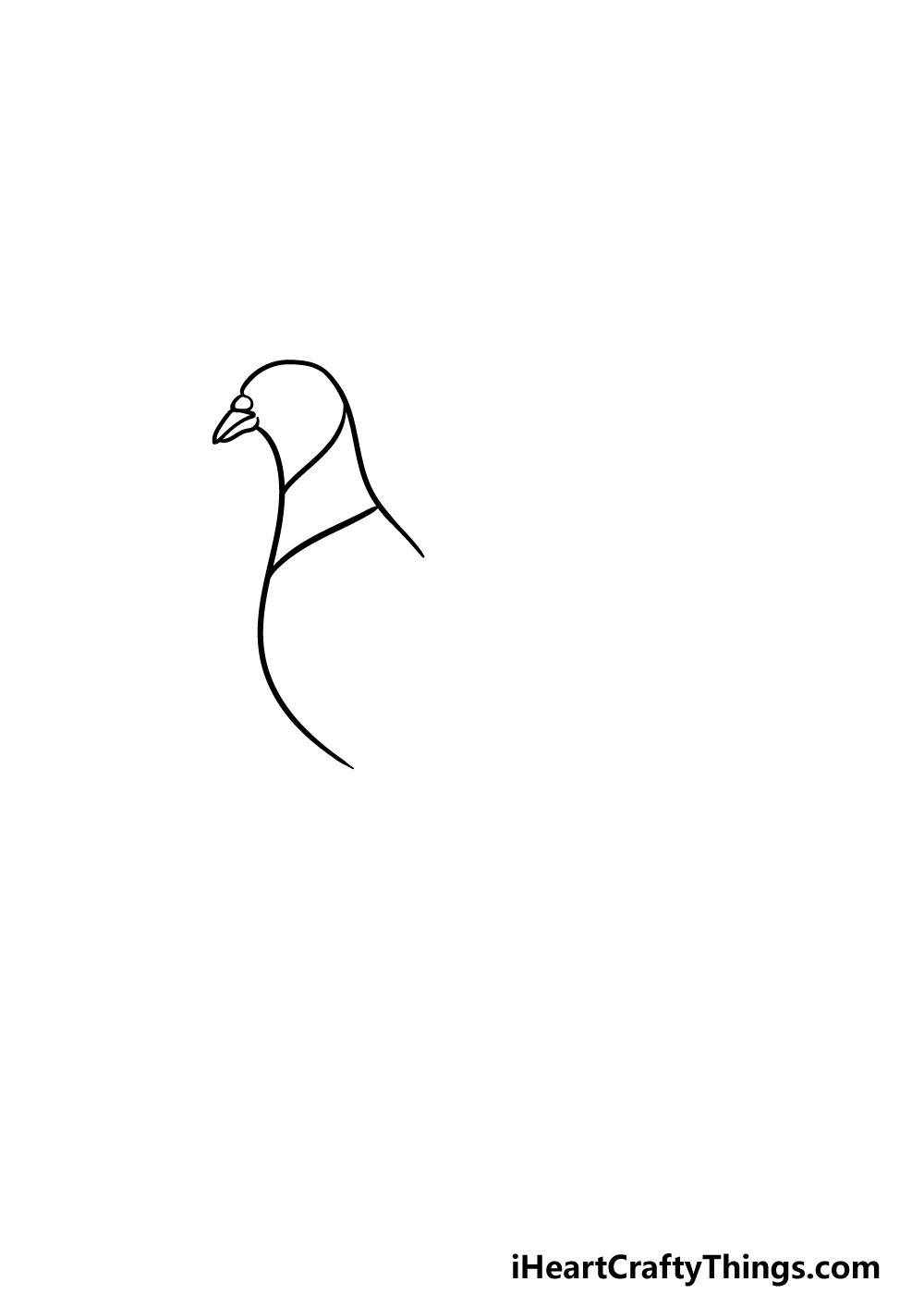 drawing a pigeon step 1