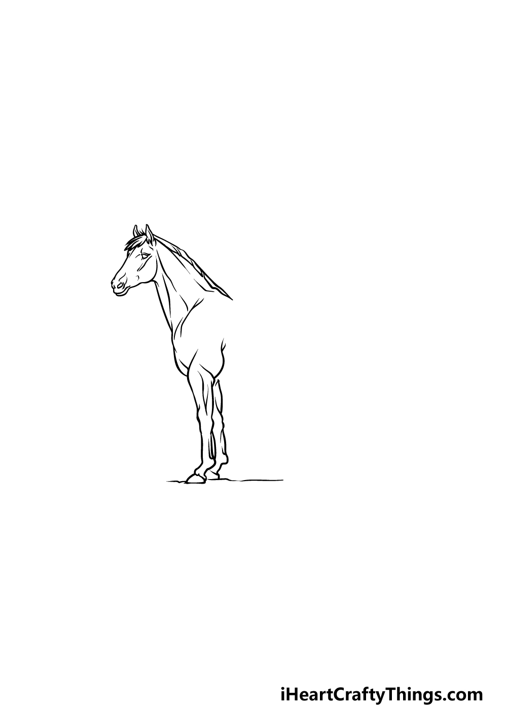 drawing a horse step 2