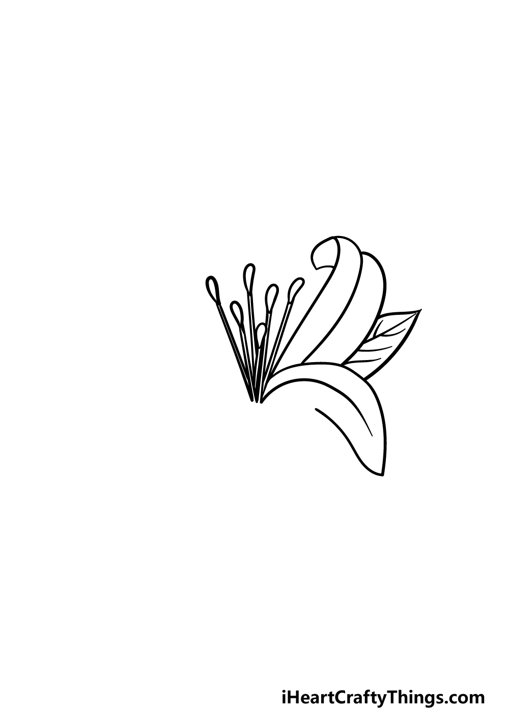 drawing Lily Flower step 2
