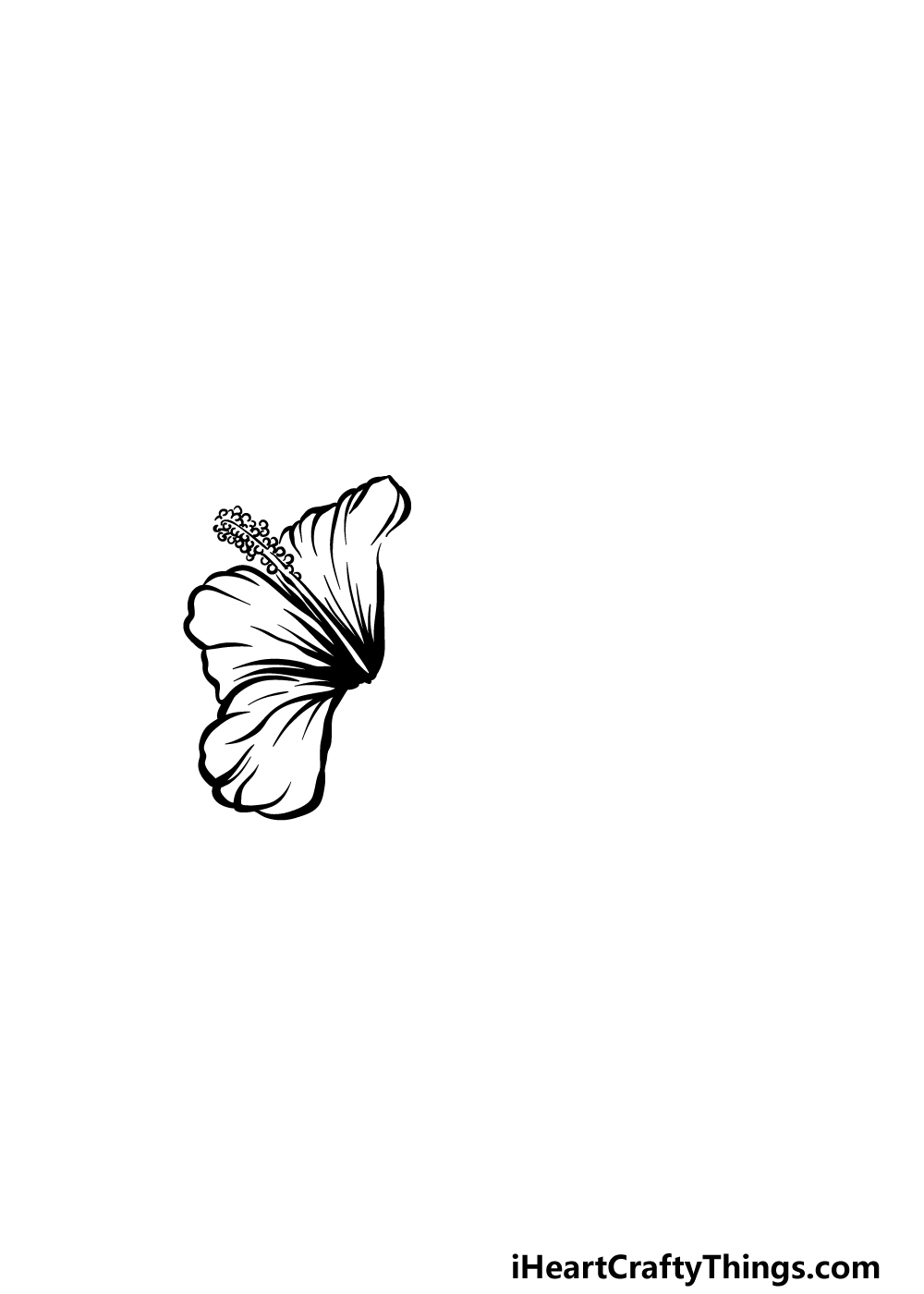 drawing hibiscus step 2