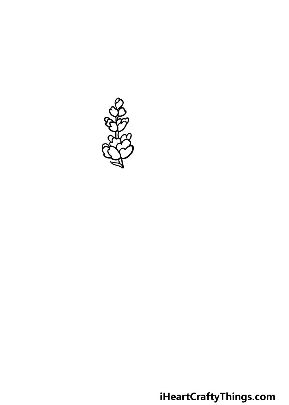 drawing lavender step 2