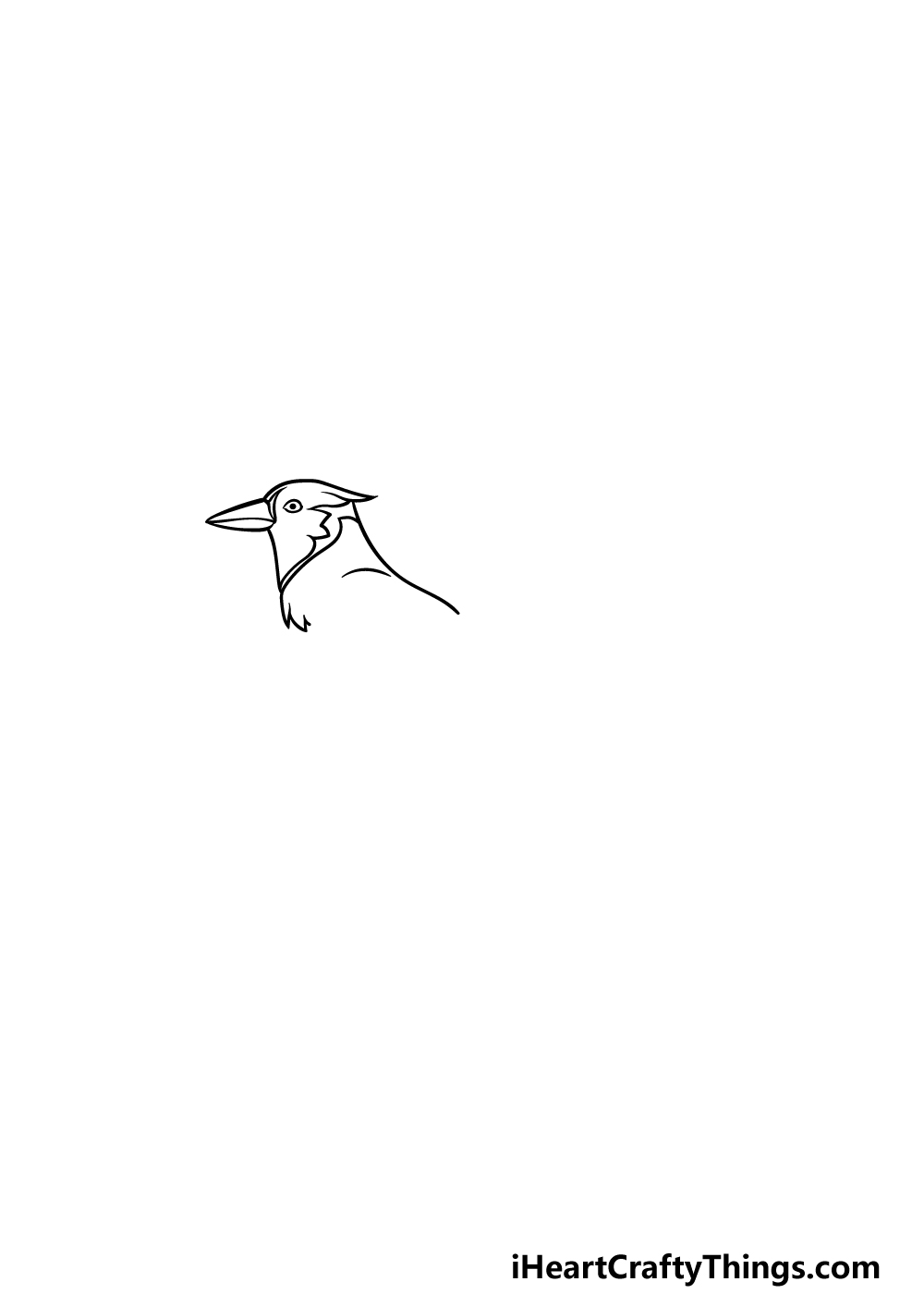 drawing a blue jay step 2