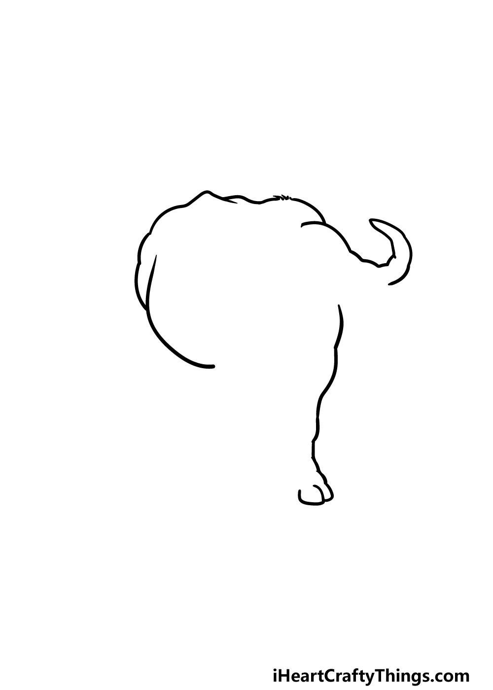 drawing buffalo step 2