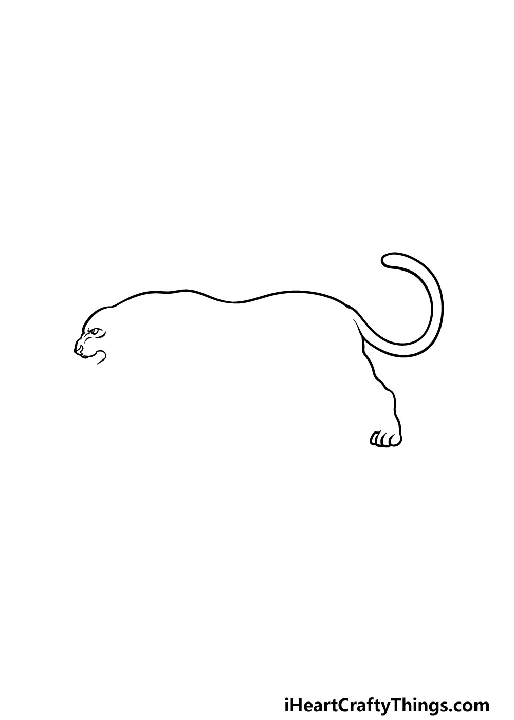 drawing a panther step 2
