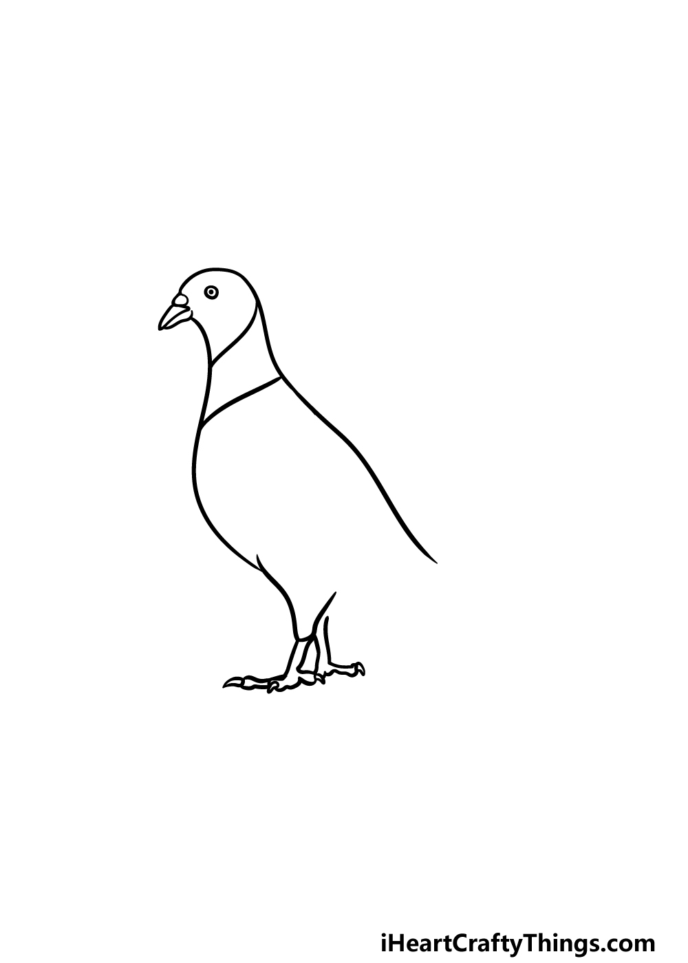 drawing a pigeon step 2