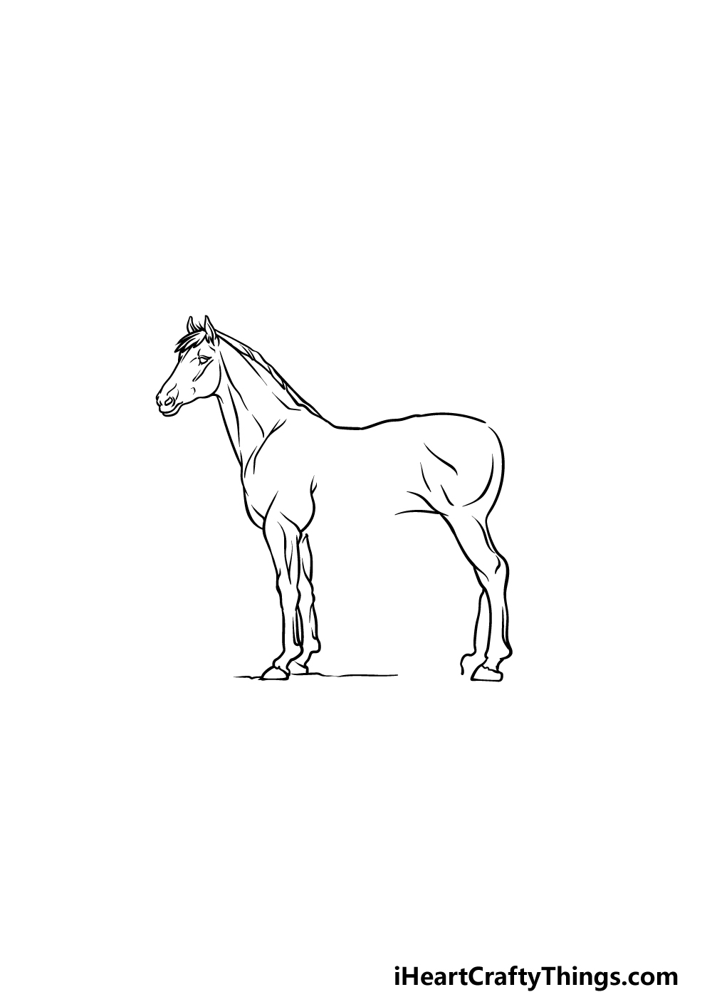 drawing a horse step 3