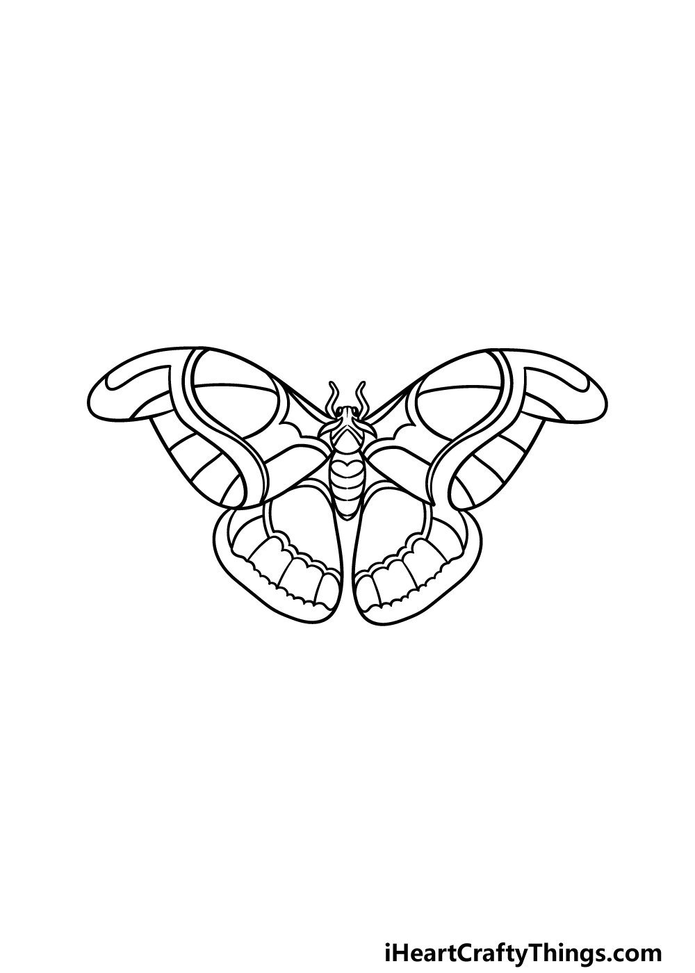 drawing a moth step 3