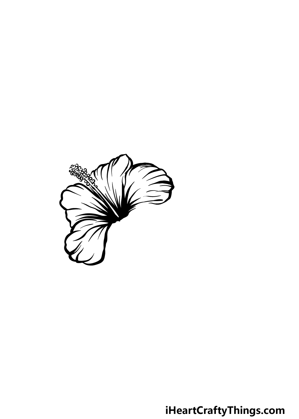 drawing hibiscus step 3