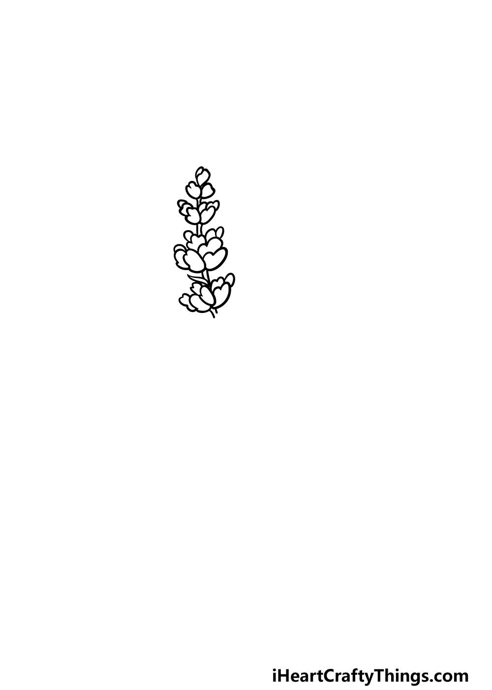 drawing lavender step 3