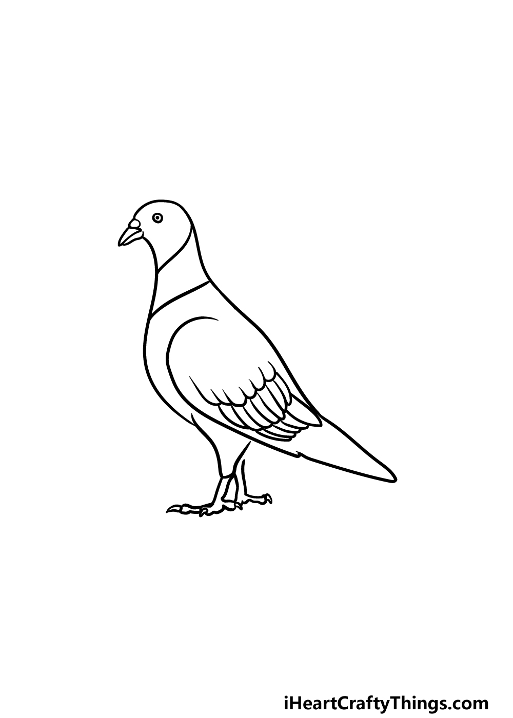 drawing a pigeon step 3