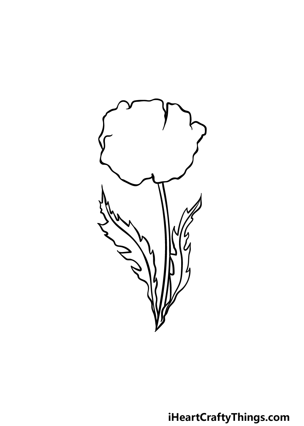 drawing a poppy step 3