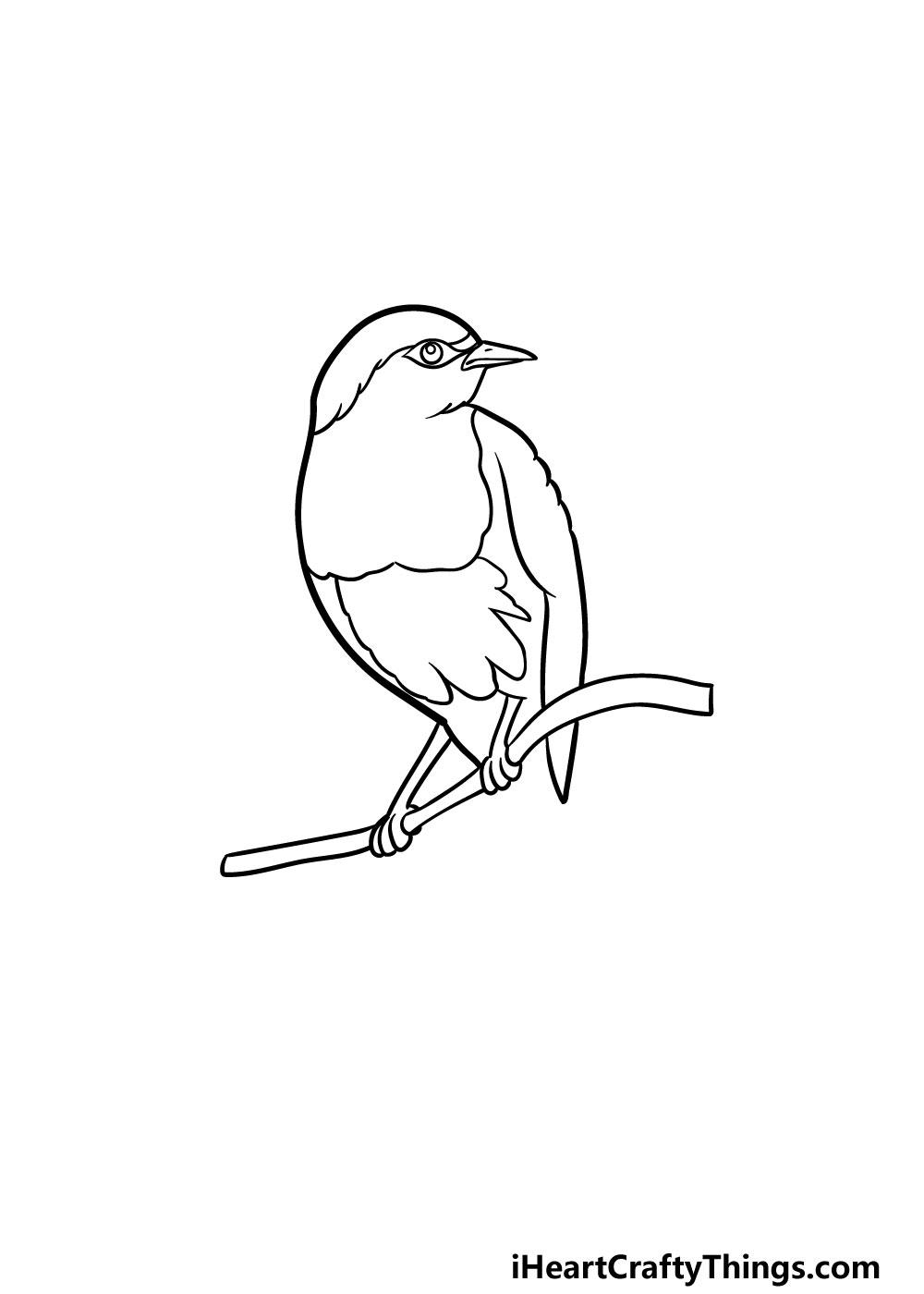 drawing a robin step 4