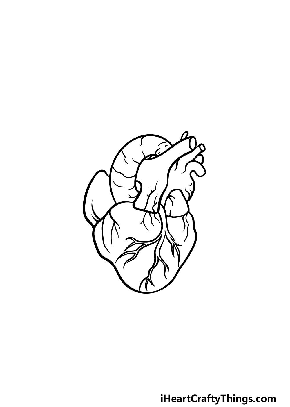 drawing a human heart step 4