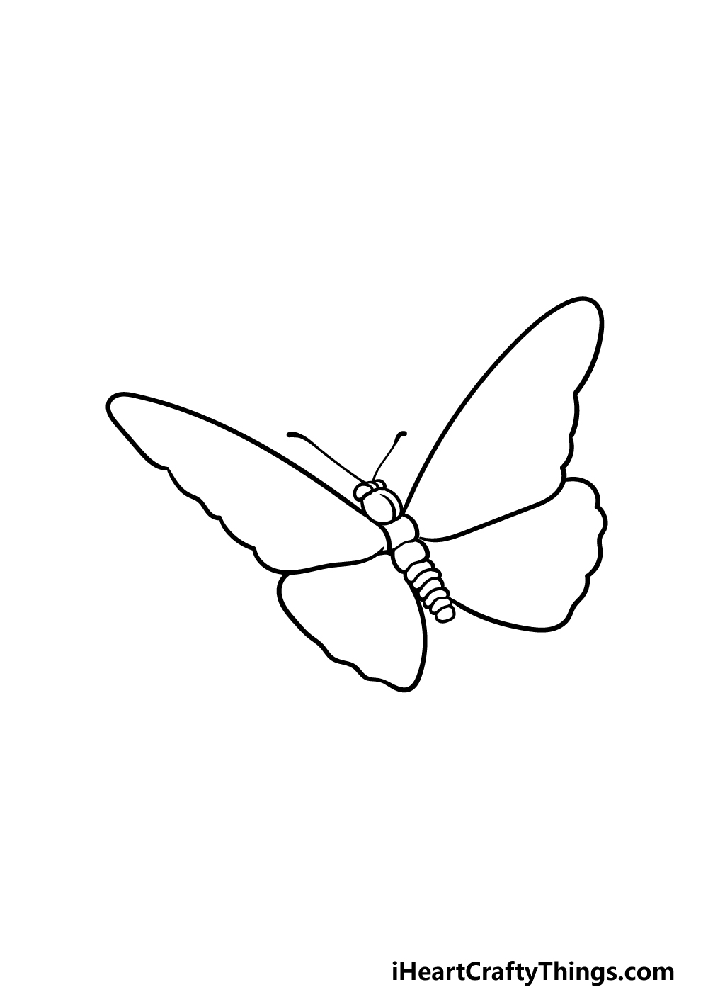 drawing  Monarch Butterfly step 4